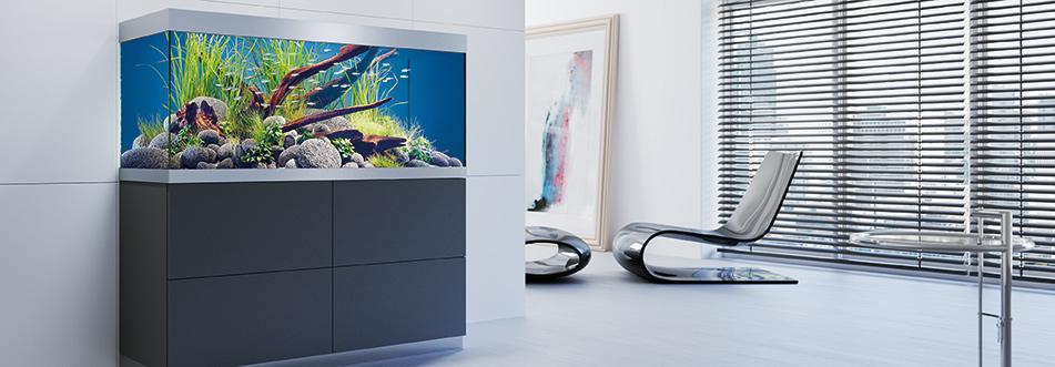 Aquaristik oase for Aquarium katalog