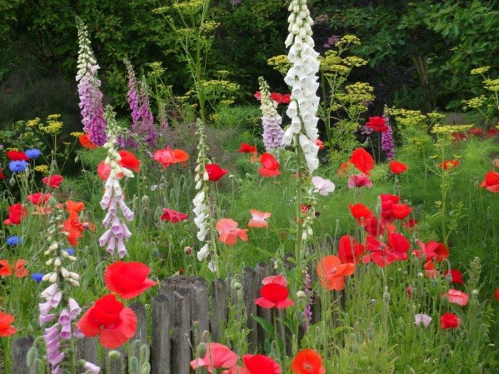Park der Gärten - OASE