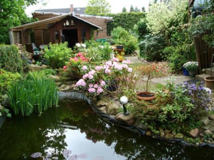 Fotogalerie oase for Fischbesatz teich