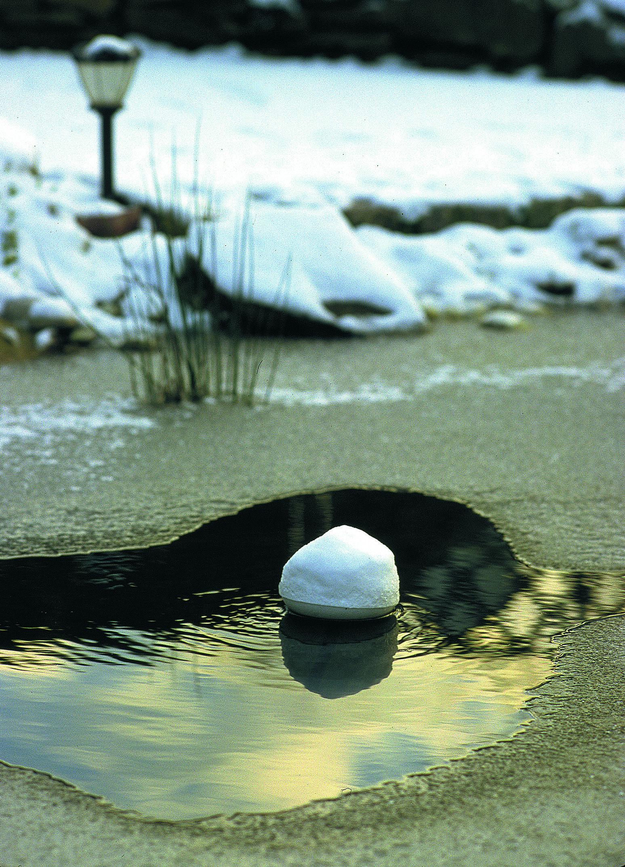 Endverbraucher gartenteich und fische im winter oase for Gartenteich im winter fische