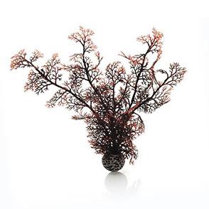biOrb hoornkoraal medium donkerrood