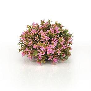 biOrb bloemenbal roze