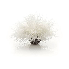 biOrb Aquarium zeelelie wit