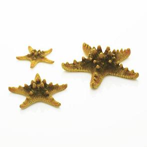 biOrb set van 3 zeesterren, geel