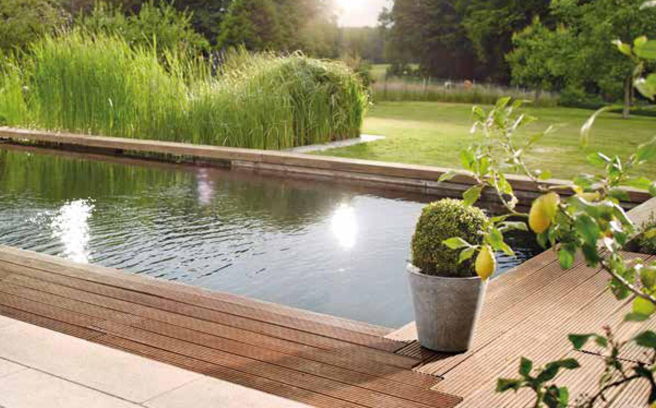 Water Garden Oase